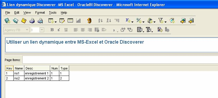 excel_discoverer_oracle01.jpg